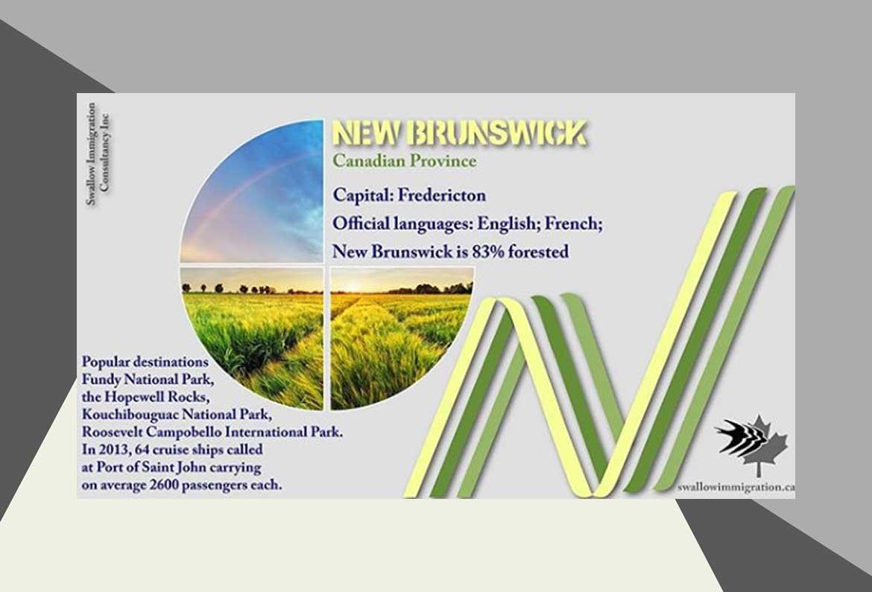 New Brunswick News