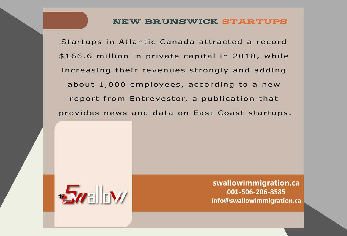 New Brunswick Startups