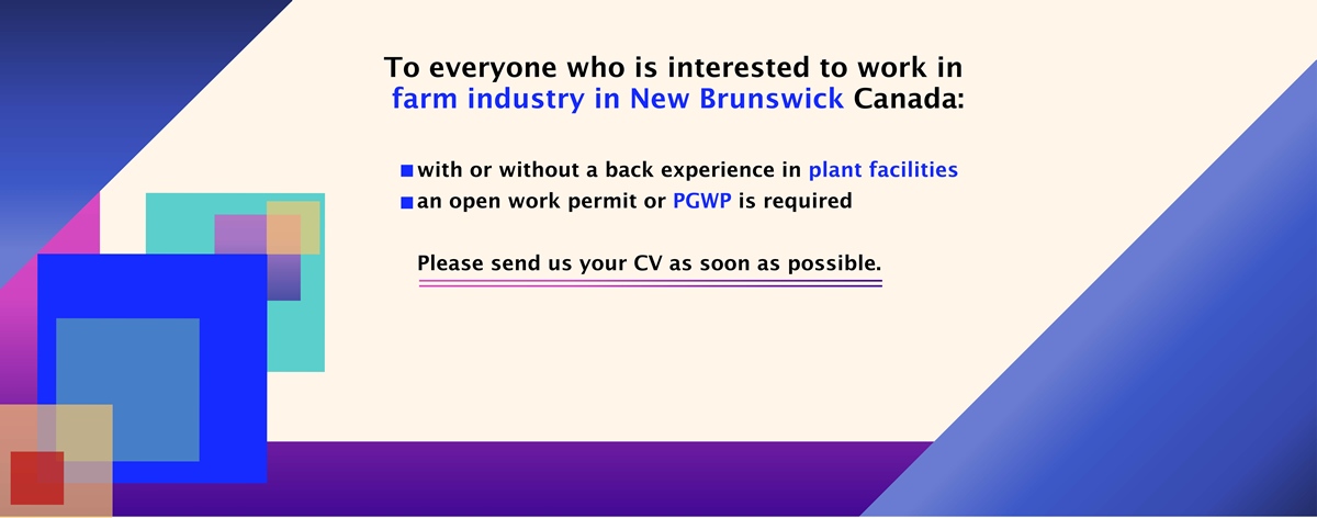 NB Farm industry