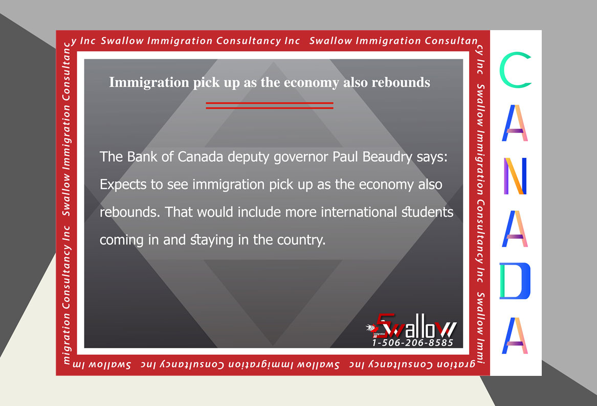 Immigration pick up as the economy also rebounds